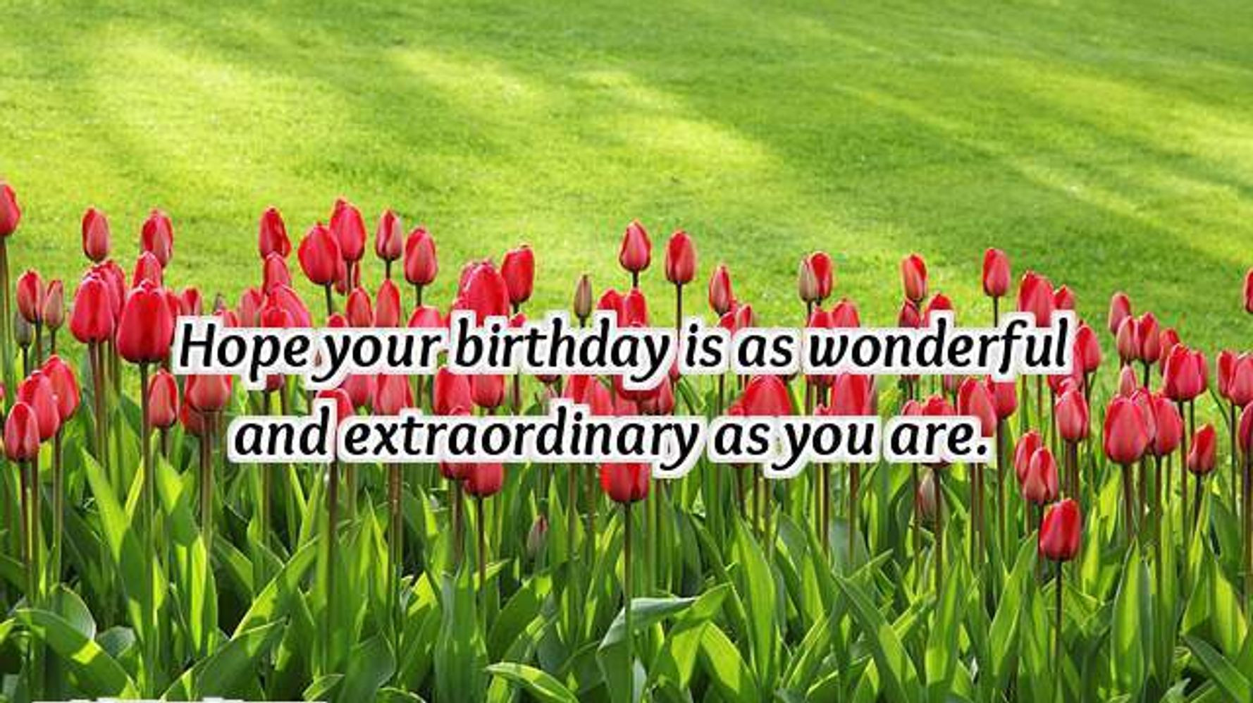 Birthday Wishes For Best Friend  23 Birthday Wishes for Friends & Best Friend Happy