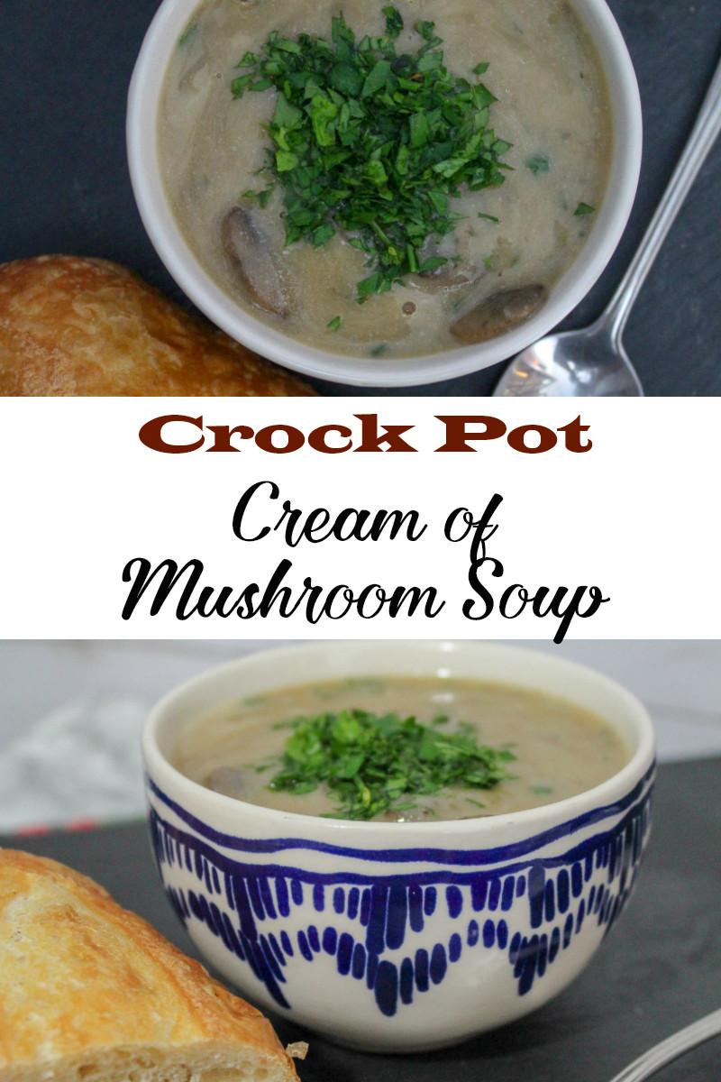 Crockpot Chicken Recipes With Cream Of Mushroom Soup  Crock Pot Cream of Mushroom Soup Snack Rules
