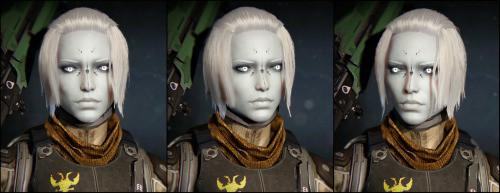 Destiny 2 Female Hairstyles  female awoken