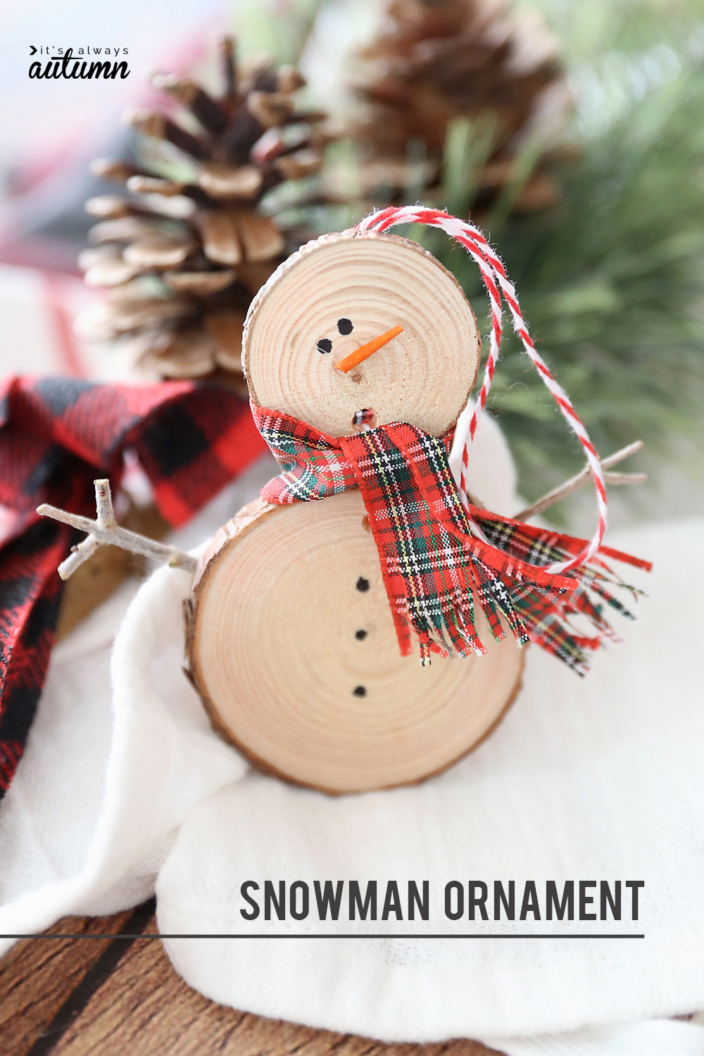 DIY Kids Christmas Craft  25 Easy Christmas Crafts for Kids Crazy Little Projects