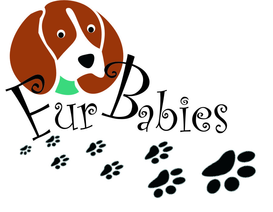 Fur Baby Quotes  Not only Customers love the Worktops their Fur Babies