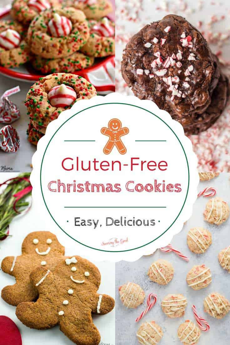 Gluten Free Holiday Cookie Recipes  Gluten Free Christmas Cookies Recipes The best collection