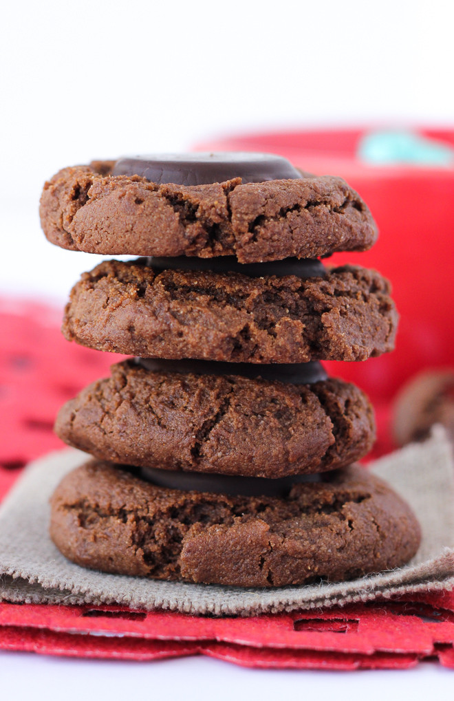 Gluten Free Holiday Cookie Recipes  50 Gluten Free Christmas Cookie Recipes
