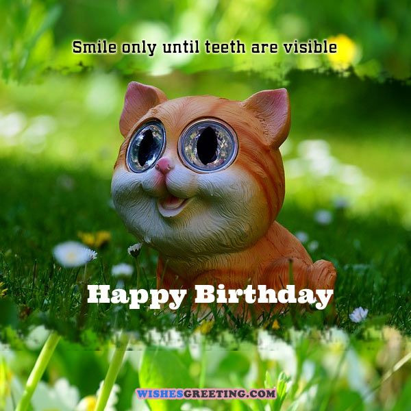 Goofy Birthday Wishes  105 Funny Birthday Wishes and Messages