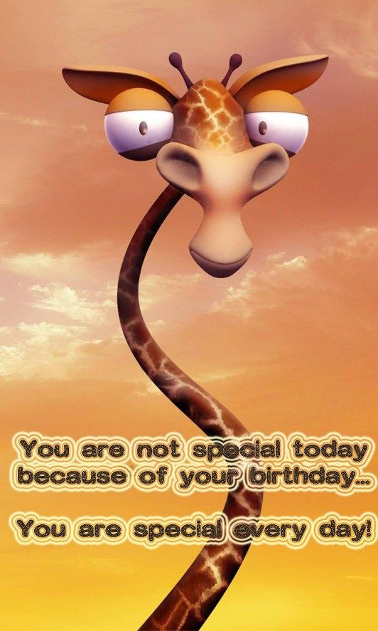 Goofy Birthday Wishes  Funny birthday image with greeting words