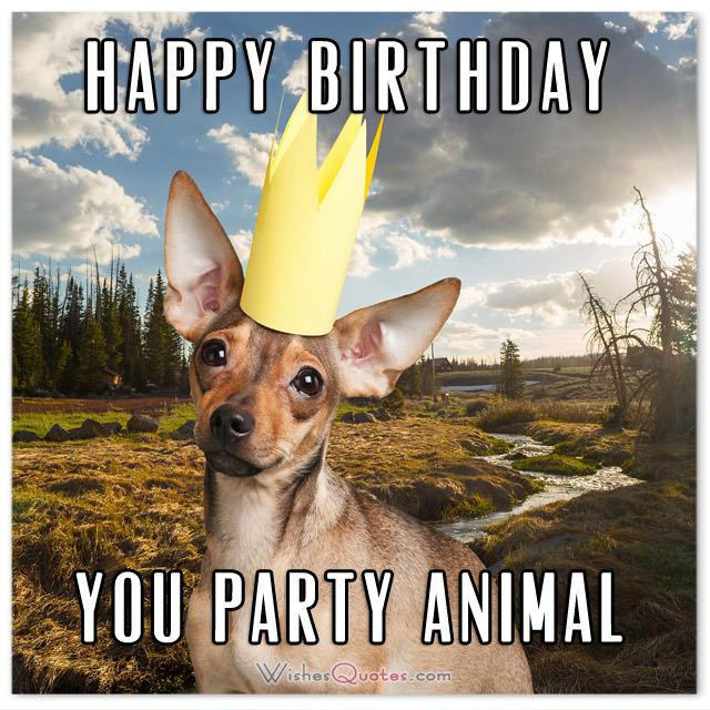Goofy Birthday Wishes  The Funniest and most Hilarious Birthday Messages and Cards