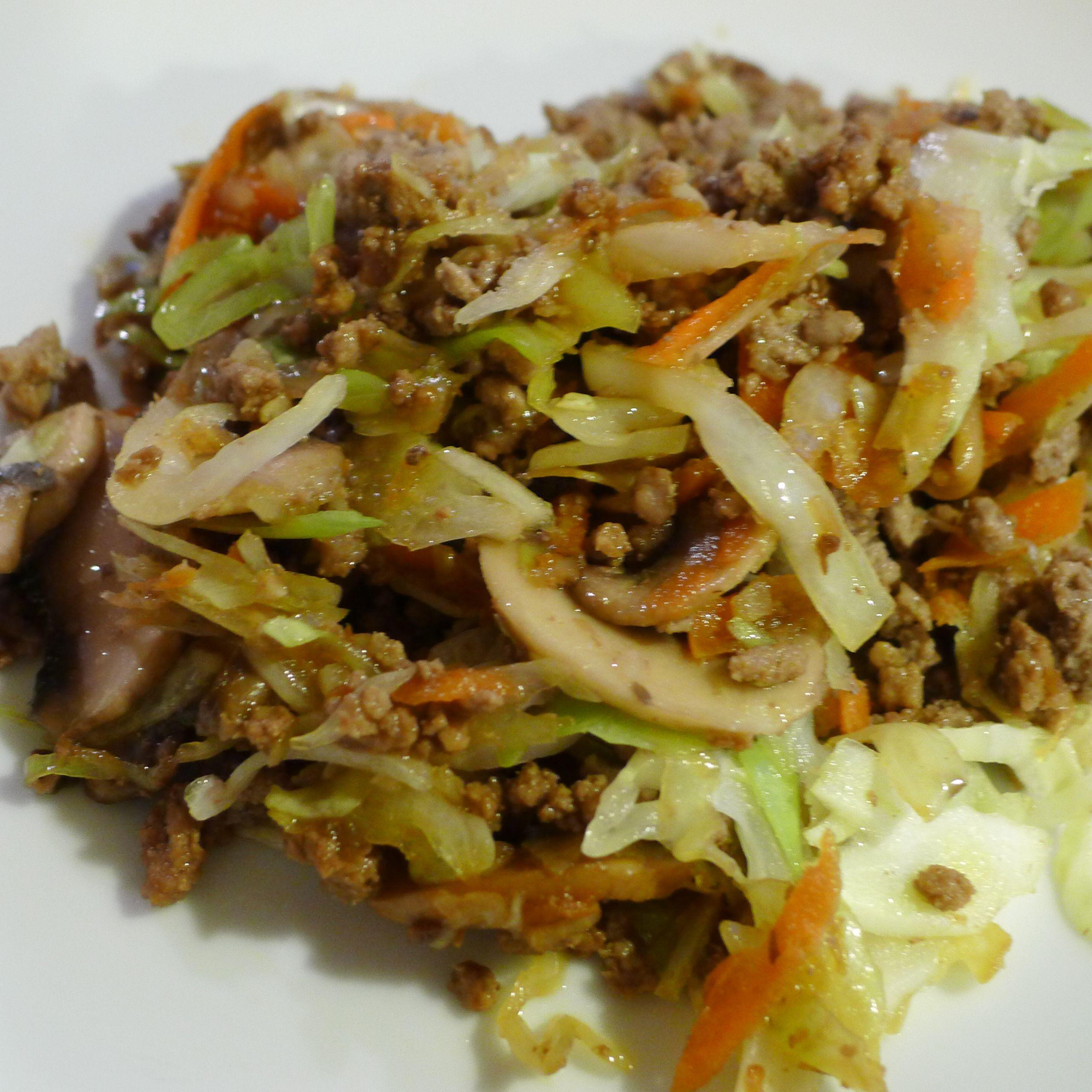 Ground Beef Stir Fry Recipes  feedingmykid