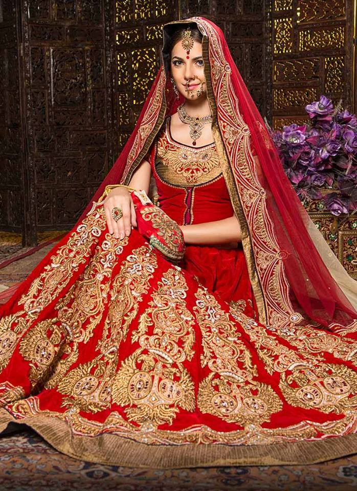Indian Wedding Gown  30 ROYAL INDIAN WEDDING DRESSES CANT GET BETTER THAN THIS
