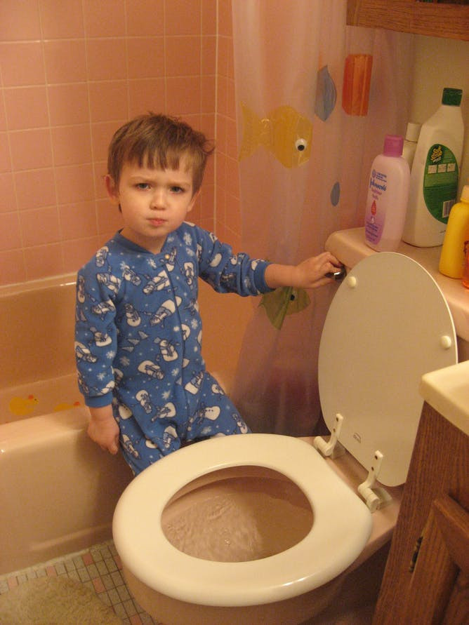 Kids Bathroom Stool  Curious Kids Where does my poo go when I flush the toilet