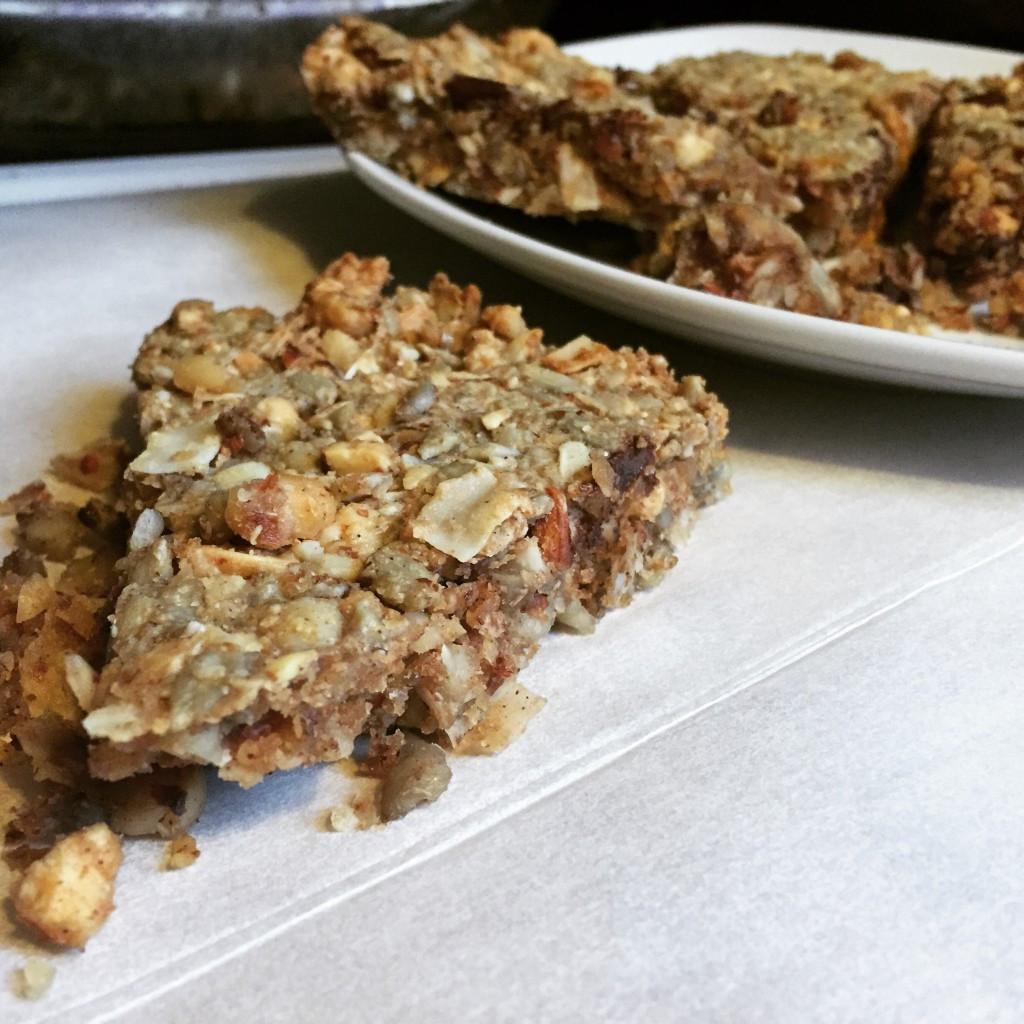 Low Fat Keto Recipes  Low Carb Granola Bar Fat Bombs WickedStuffed Keto Recipe