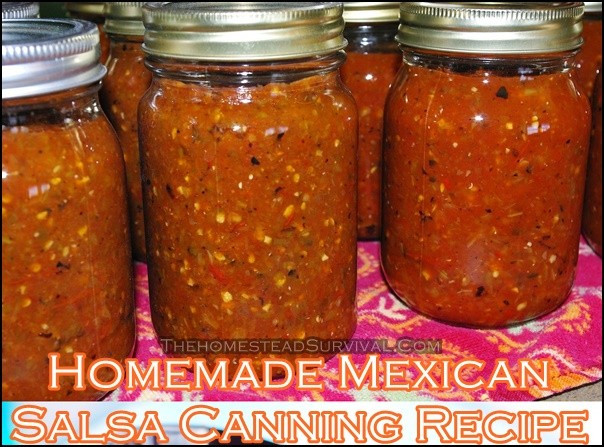 Mexican Salsa Recipe For Canning  Canning Archives