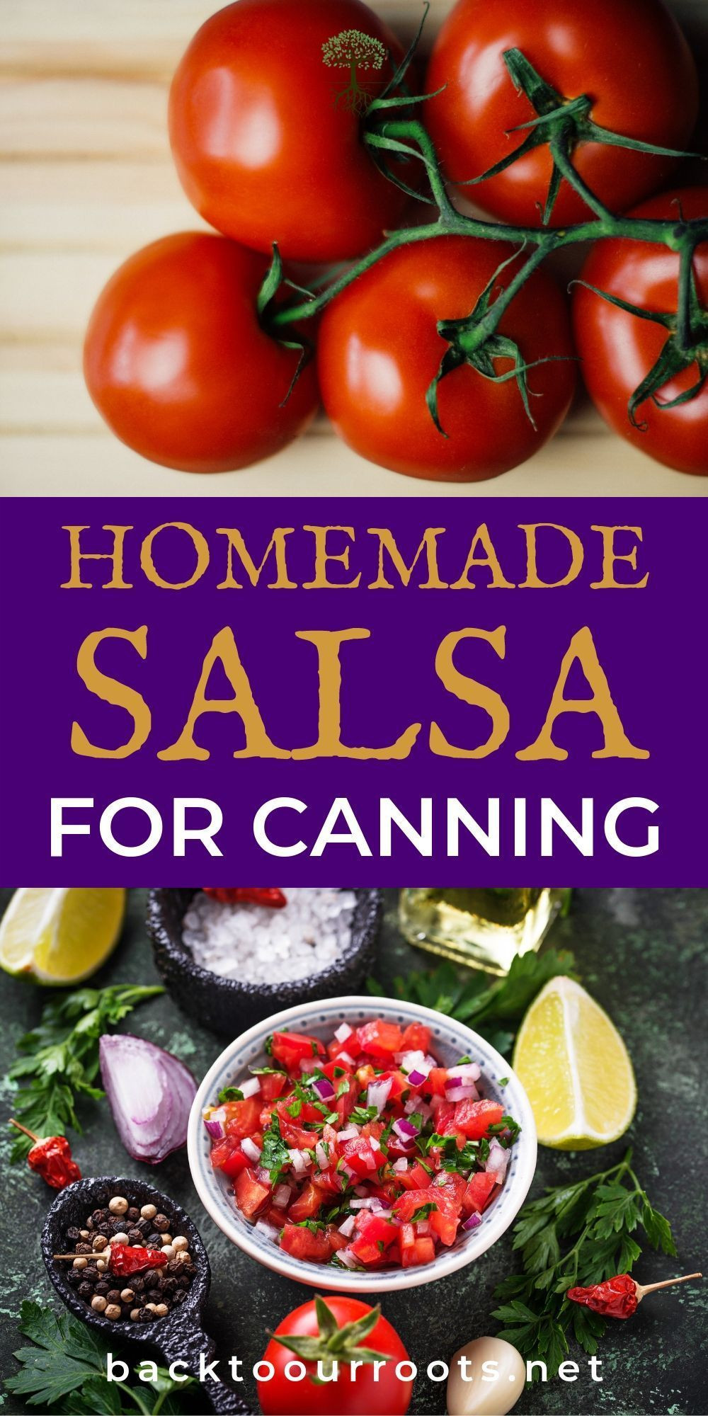 Mexican Salsa Recipe For Canning  The Best Homemade Salsa Recipe for Canning