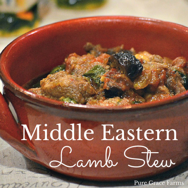 Middle East Lamb Stew  Middle Eastern Lamb Stew Pure Grace Farms