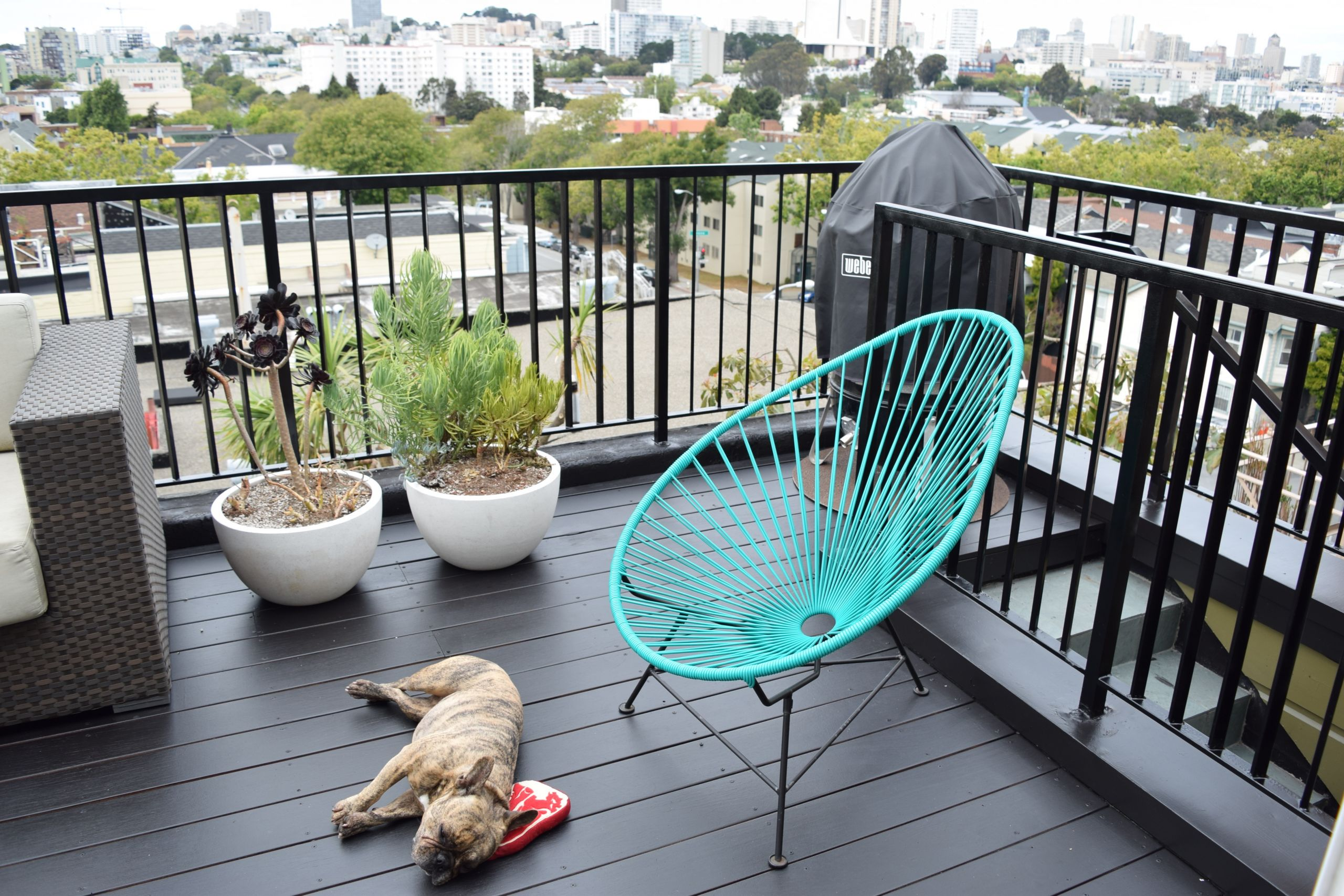 Paint My Deck  Black Decking Paint • Decks Ideas