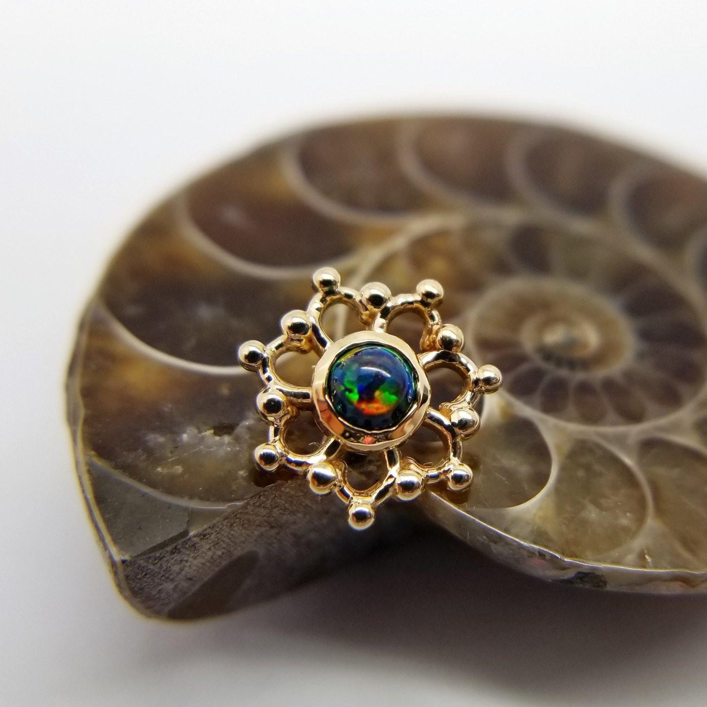 Peircings Body Jewelry  High Quality Body Jewelry