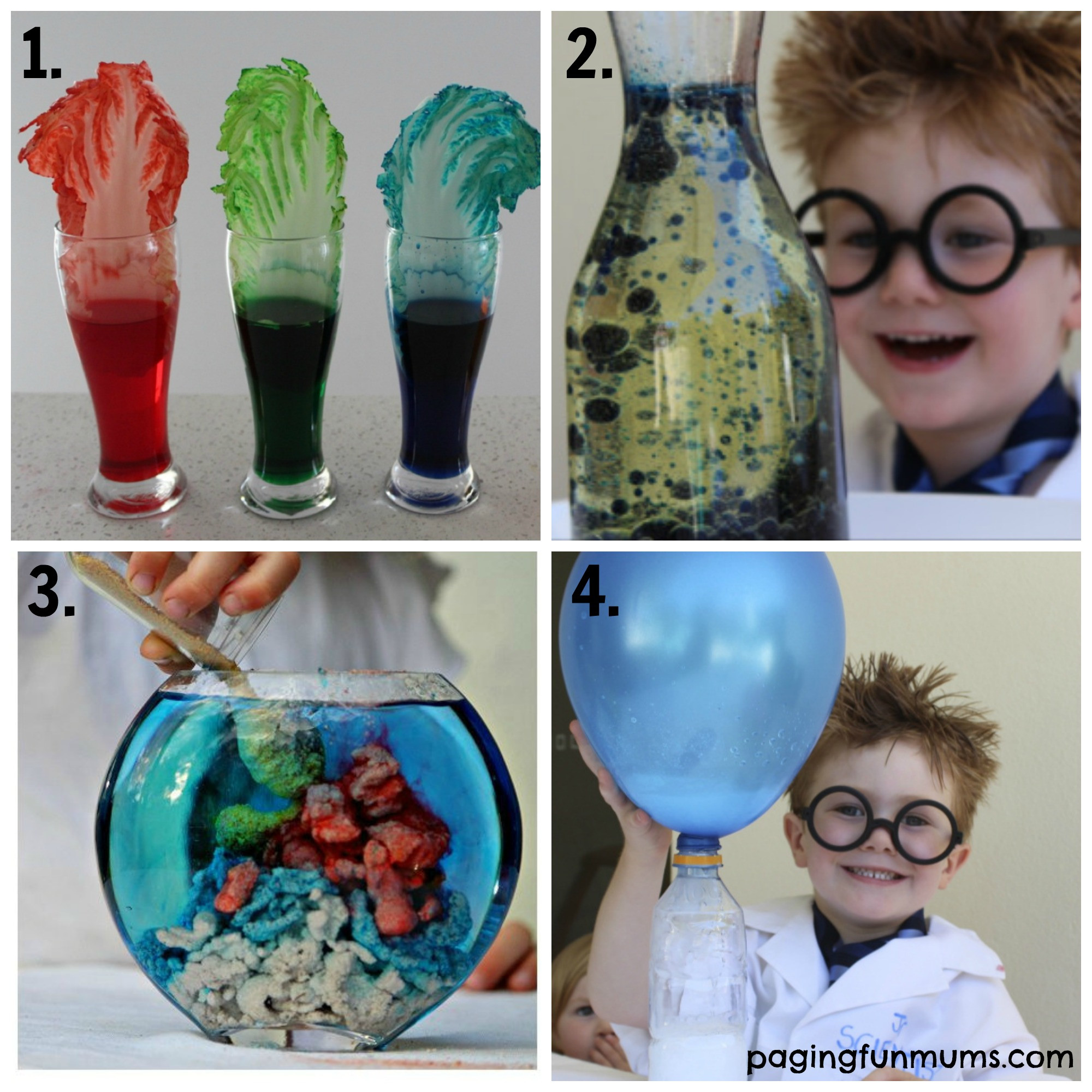Projects For Kids At Home  21 Fun Science Experiments for Kids 1 4 Paging Fun Mums