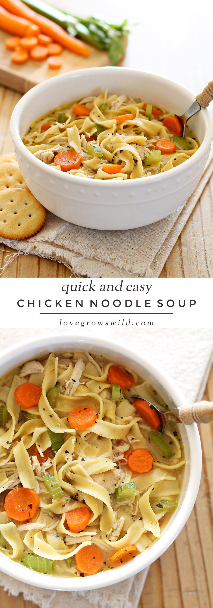 Quick Homemade Chicken Noodle Soup  Quick and Easy Chicken Noodle Soup Love Grows Wild