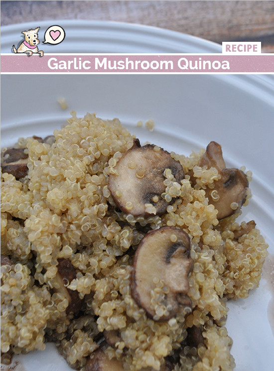 Quinoa Mushroom Recipe  Quinoa with Garlic and Mushrooms Mac Molly