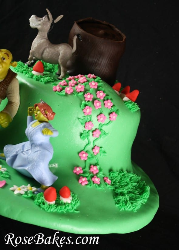 Shrek Birthday Cake  Shrek Birthday Cake