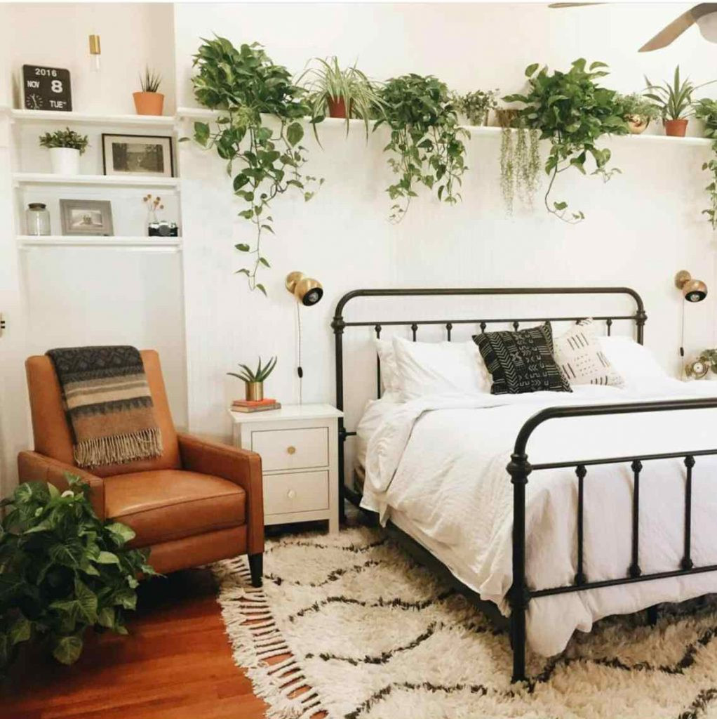 Small Bedroom Plants  3 bedroom plants that will help you sleep better at