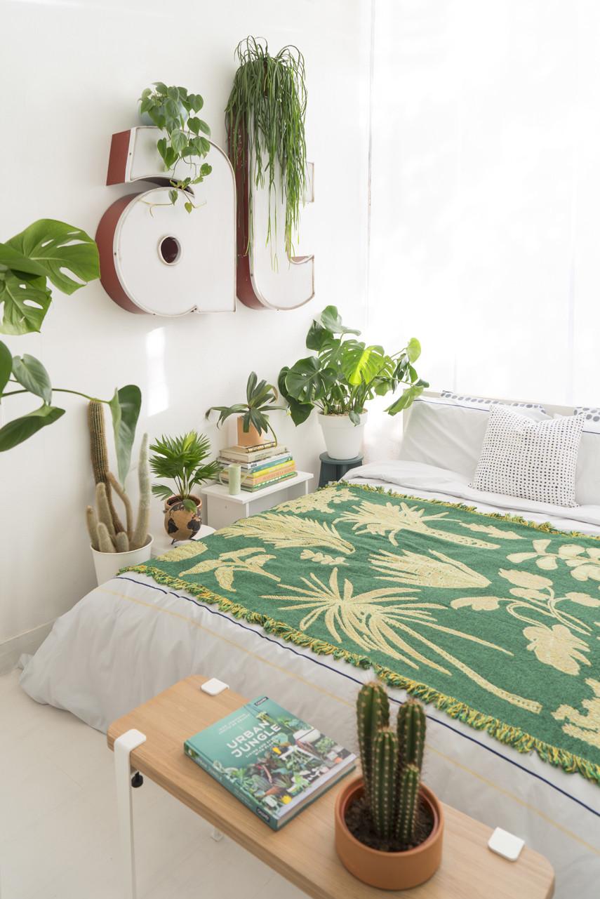 Small Bedroom Plants  Sleeping with Plants