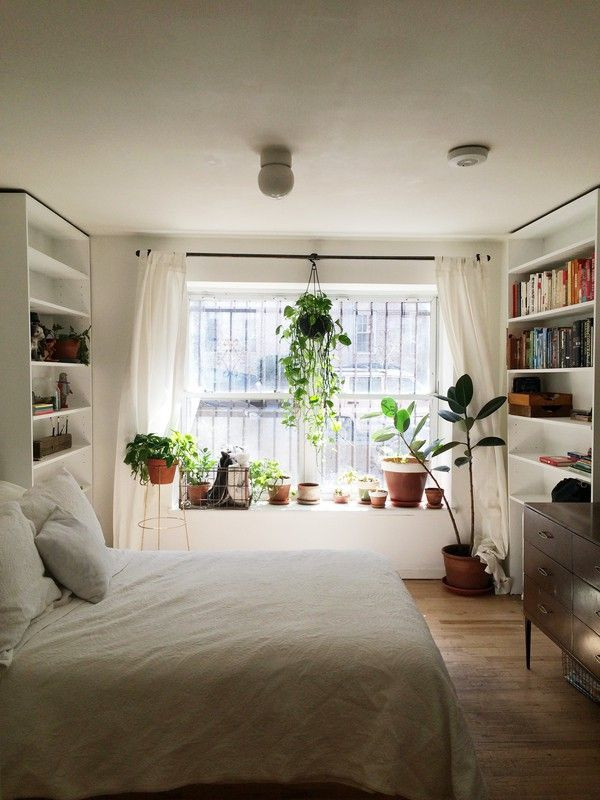 Small Bedroom Plants  11 Inspired New Ways to Hang Plants Around Your Home