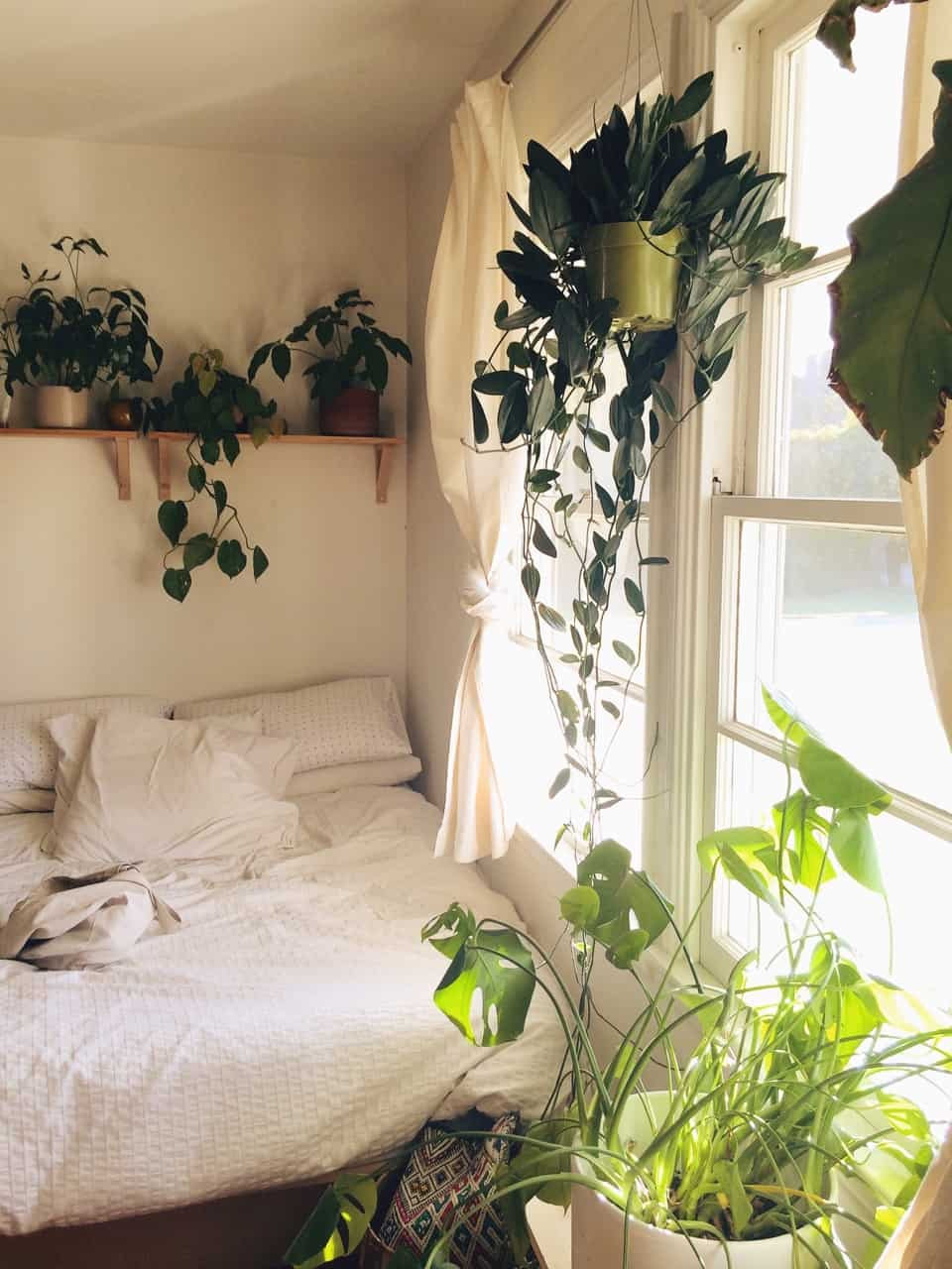 Small Bedroom Plants  13 Tips and Tricks How To Decorate A Small Bedroom