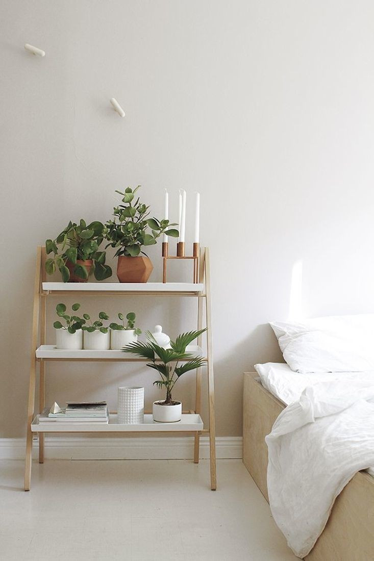 Small Bedroom Plants  Ideas of Including Indoor Plant Shelves in Your Home's