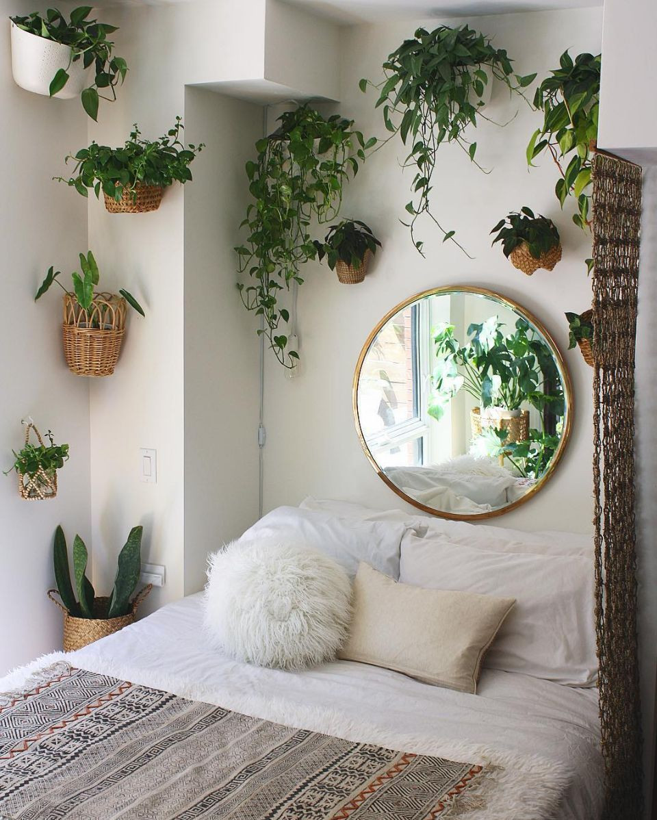 Small Bedroom Plants  13 smart and savvy small bedroom decorating ideas