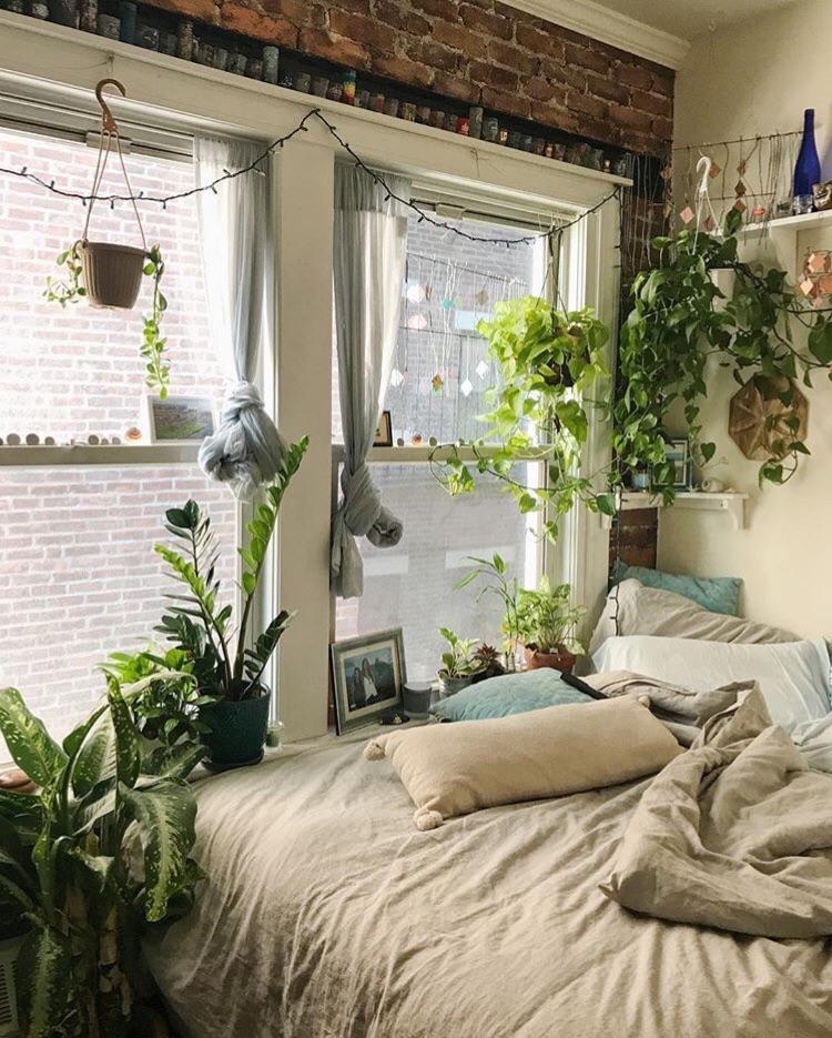 Small Bedroom Plants  Urban Jungle in Boston CozyPlaces