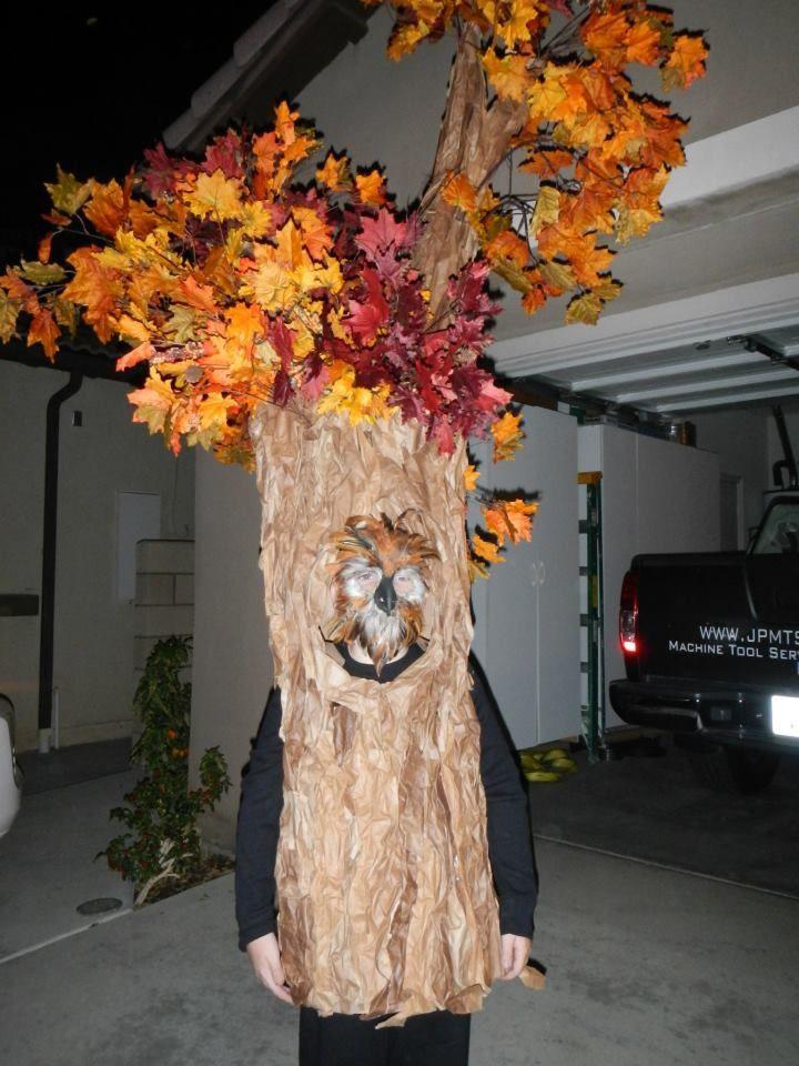 Tree Costumes DIY  Homemade tree costume childhood Pinterest
