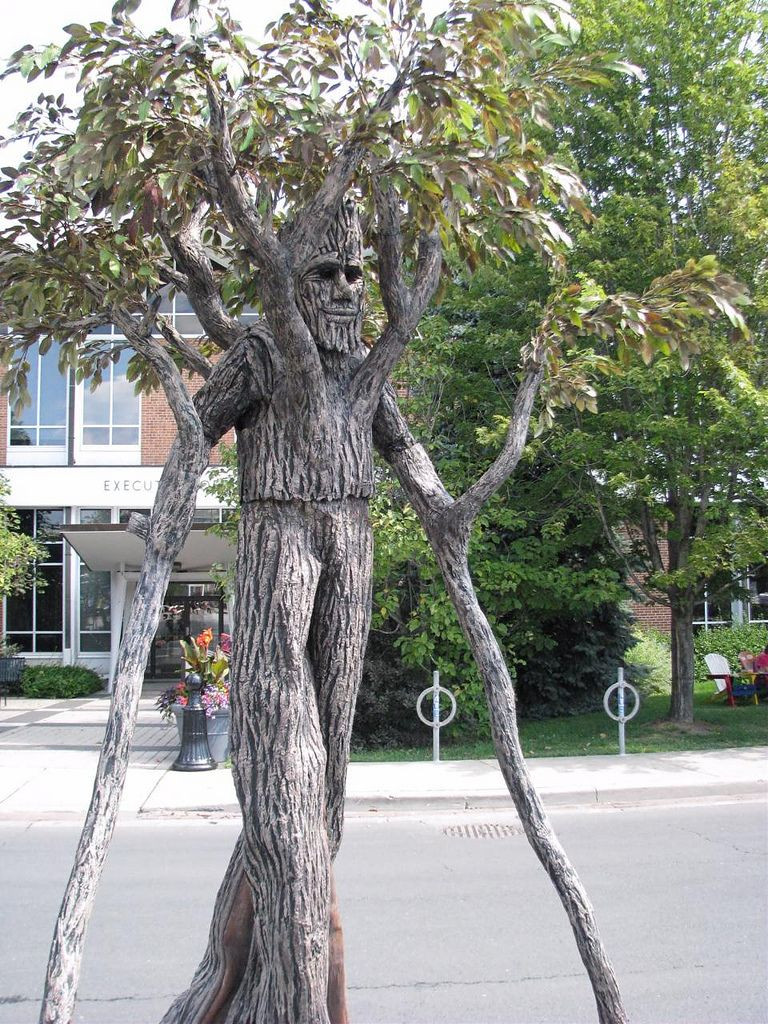 Tree Costumes DIY  Walking Tree Costume in 2020