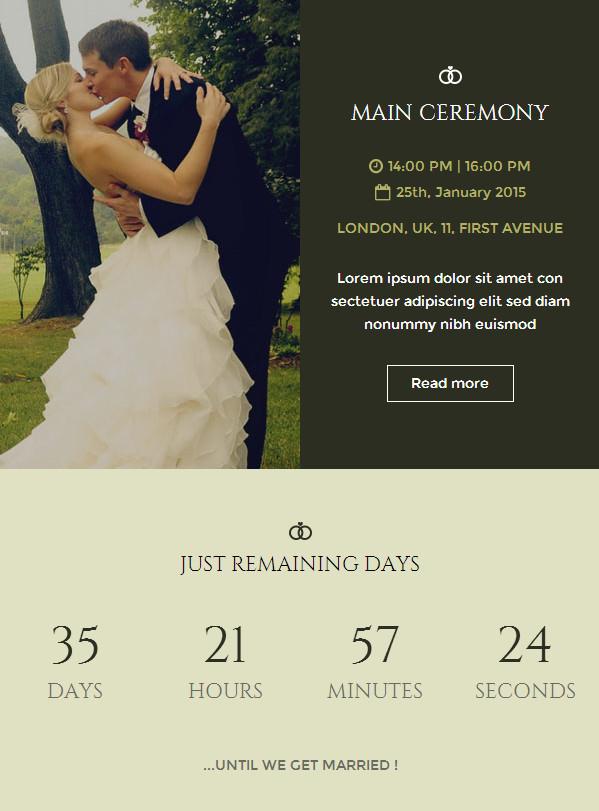 Wedding Email Invitations  Wedding Invitation Newsletter Buy Premium Wedding